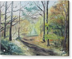 Ashridge Woods 2 Acrylic Print