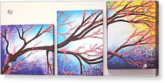 Asian Bloom Triptych Acrylic Print