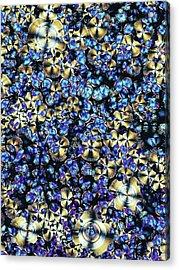 Asparagine Crystals Acrylic Print