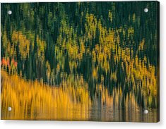 Acrylic Print featuring the photograph Aspen Abstract by Ken Smith