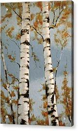 Aspen Autumn Acrylic Print by Richard Hinger