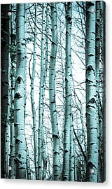 Aspen Blues Acrylic Print