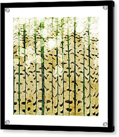 Aspen Colorado Abstract Square 3 Acrylic Print by Andee Design