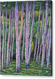 Aspen Enclave Acrylic Print by Johnathan Harris