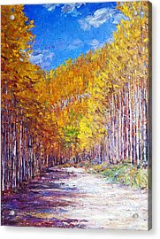 Aspen Glory Acrylic Print by Steven Boone