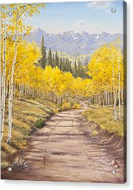 Aspen Trail Acrylic Print by Frances Lewis