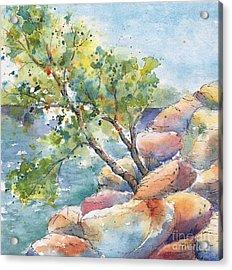 Aspen On The Rocks Acrylic Print
