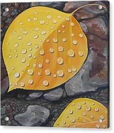 Aspen Rain Acrylic Print by Hunter Jay