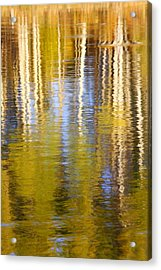 Acrylic Print featuring the photograph Aspen Reflection by Kevin Desrosiers