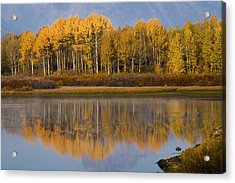 Acrylic Print featuring the photograph Aspen Reflection by Sonya Lang