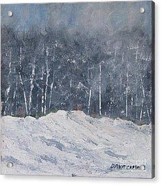 Aspen Ridge Blizzard Acrylic Print by Dana Carroll