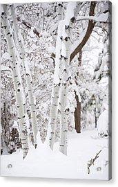 Aspen Snow Acrylic Print