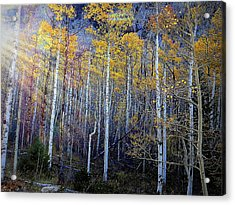 Acrylic Print featuring the photograph Aspen Sunset by Karen Shackles