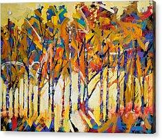Aspen Trees Acrylic Print by Ron and Metro