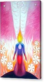 Aspiration - Answer Acrylic Print by Shiva  Vangara