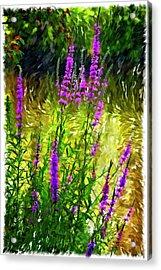 Aspirations Vignette Acrylic Print by Steve Harrington
