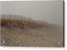 Assateague Dunes Acrylic Print by Joann Renner