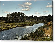 Assateague Island - A Nature Preserve Acrylic Print