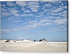 Assateague National Park Dunes Acrylic Print