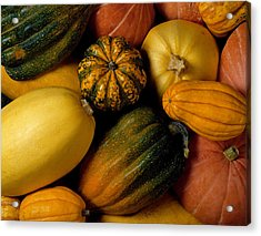 Assortment Of Squash Acrylic Print by Brand X Pictures