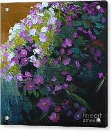 Asters Acrylic Print by Melody Cleary