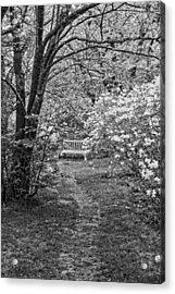 Asticou Azelea Garden On Mount Desert Island Maine Acrylic Print