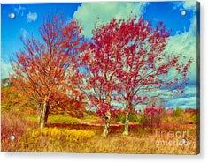 Astonishing Autumn - Fall Colors At Dolly Sods II Acrylic Print by Dan Carmichael