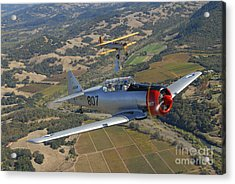 At-6 Texan And Stearman Pt-17 Flying Acrylic Print