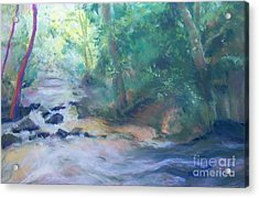 Acrylic Print featuring the painting At Bob's Creek by Mary Lynne Powers