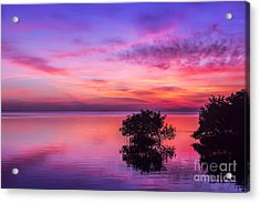 At Days End Acrylic Print