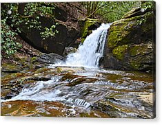 At Dodd Creek Acrylic Print