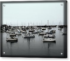 At The Bay  Acrylic Print