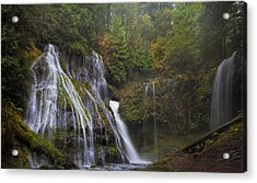 At The Bottom Of Panther Creek Falls Acrylic Print by David Gn