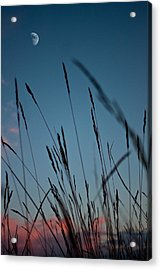 At The Fall Of Night Acrylic Print by K Hines