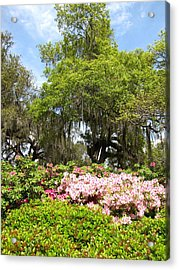 Acrylic Print featuring the photograph At The Park by Beth Vincent