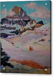 At The Top - Glacier National Park Acrylic Print by Francine Frank