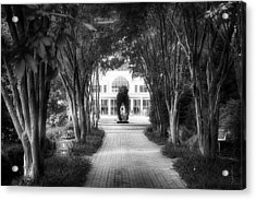 Atlanta Botanical Garden-black And White Acrylic Print