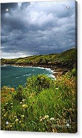 Atlantic Coast In Brittany Acrylic Print by Elena Elisseeva