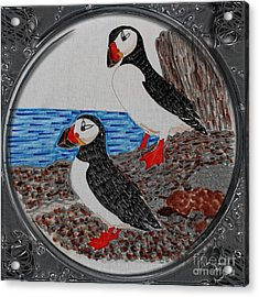 Atlantic Puffins - Porthole Vignette Acrylic Print by Barbara Griffin