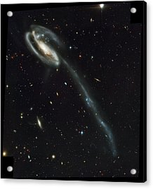 Atlas Of Peculiar Galaxies Acrylic Print by Celestial Images