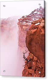 Atop Canyonlands Acrylic Print by Chad Dutson