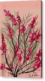 August Flowers Acrylic Print
