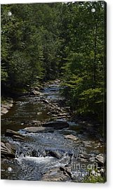 Acrylic Print featuring the photograph August On Gandy by Randy Bodkins