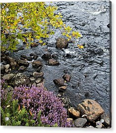 Acrylic Print featuring the photograph August Palette Scotland by Sally Ross