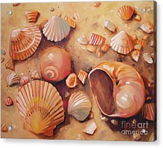 August Shells Acrylic Print by Mary Hubley
