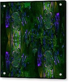 Acrylic Print featuring the photograph Aura by Robert Kernodle