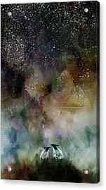 Aurora Borealis Sheep Acrylic Print