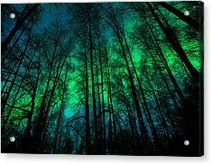 Aurora Tija Acrylic Print