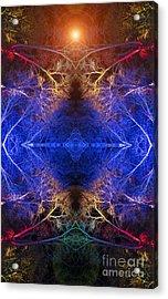 Aurora Acrylic Print by Tim Gainey