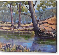 Acrylic Print featuring the painting Aussie Billabong by Murray McLeod